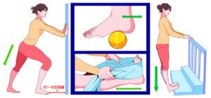 小腿拉伸有助於改善足底筋膜炎,網球運動可伸展足弓舒緩疼痛,跟腱伸展時,後腳跟1/3應懸空,利用毛巾伸展足底筋膜p1154-a5-01