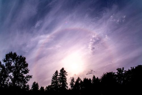 西雅圖雷藏寺上空出現珍貴的大日虹光