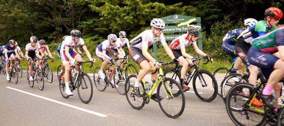騎腳踏車、爬樓梯,膝關節彎曲角度大,軟骨易受傷。